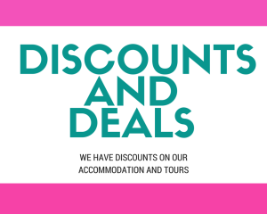 Discounts and Deals
