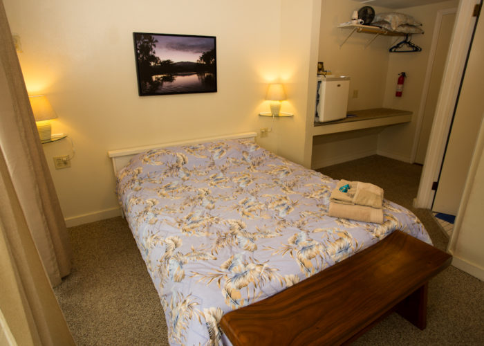 Deluxe room with AC and private bathroom