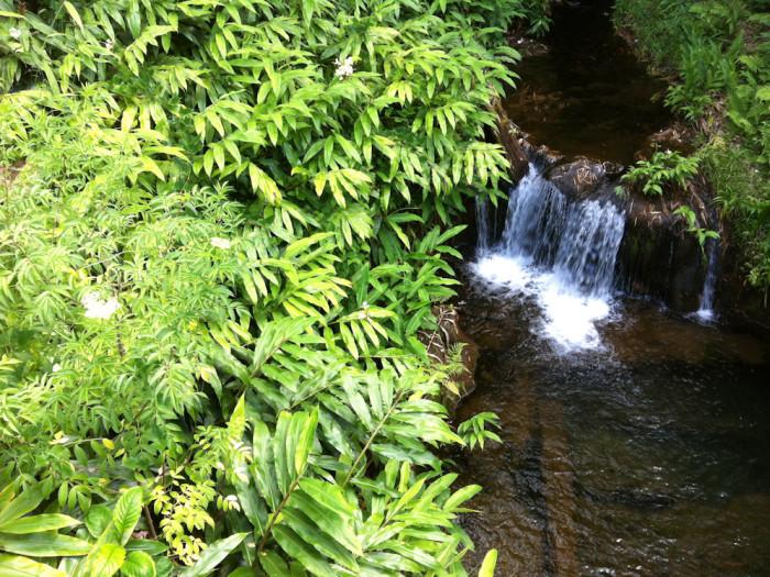 Akaka mini falls